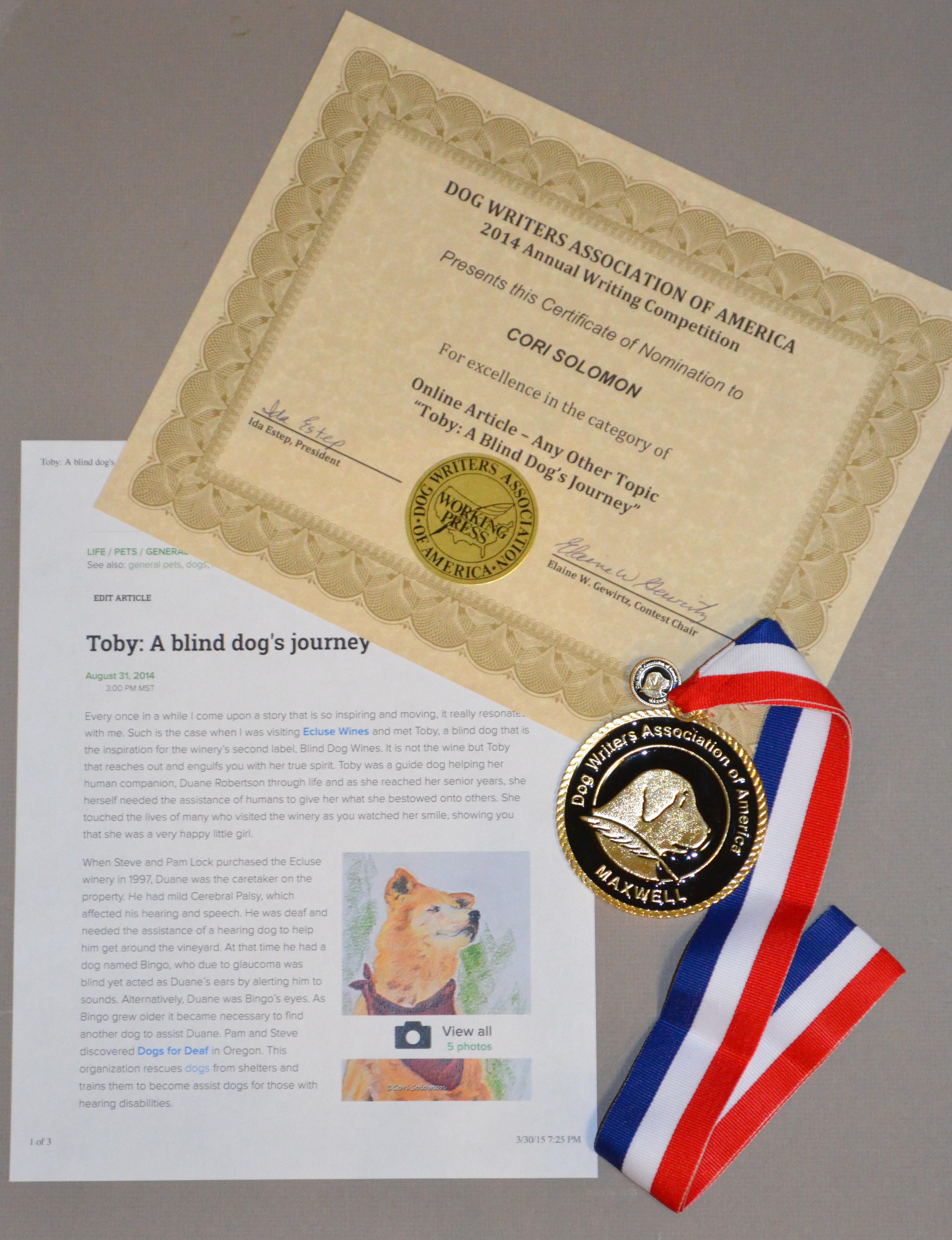 DWAA Award -1