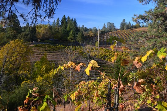 El Dorado Wine Country Vineyards