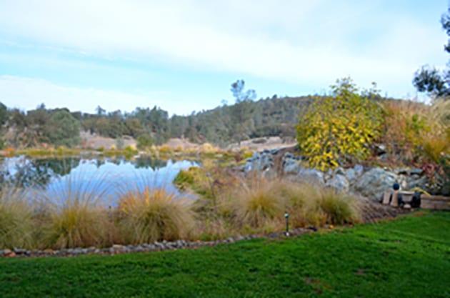The Pond at Eden Vale Inn