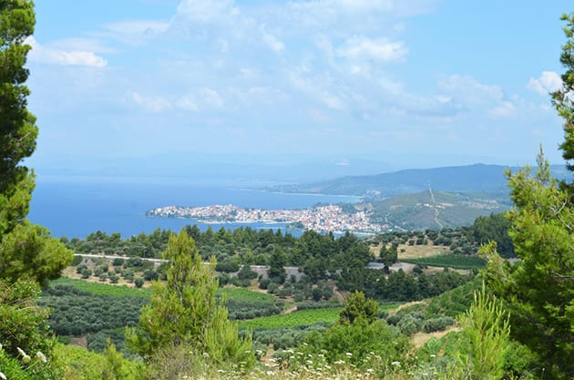 Sithonia Coastline from Greek Winery Porto Carras