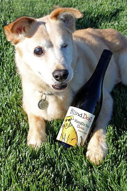 Toby and Ecluse Wines Blind Dog Wine