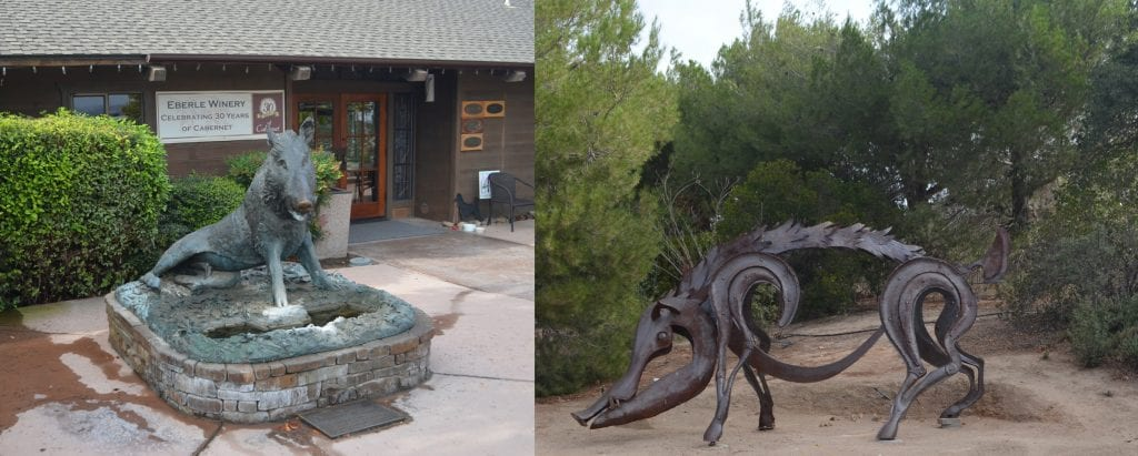The Boars at Eberle Winery