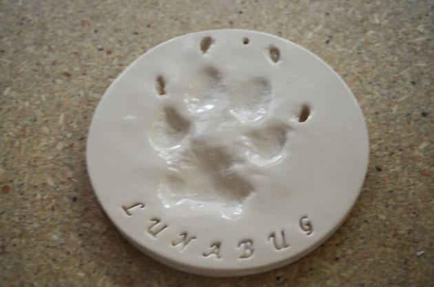 A Pawprint from Peaceful Pets