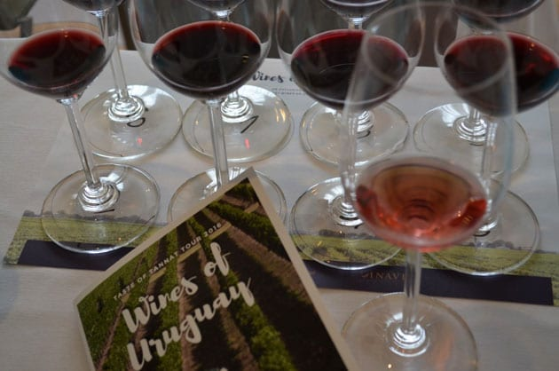 Tannat Wines of Uruguay