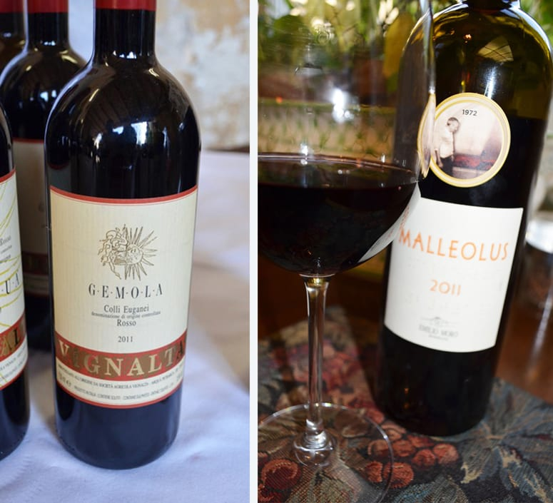 Red Wines 2016 Wines in Review