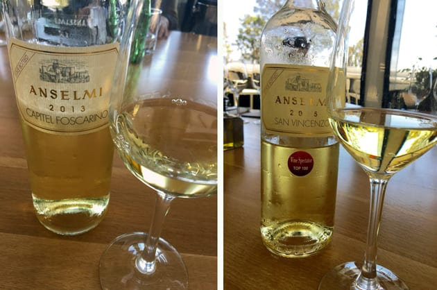 Garganega Focused Wines of Anselmi