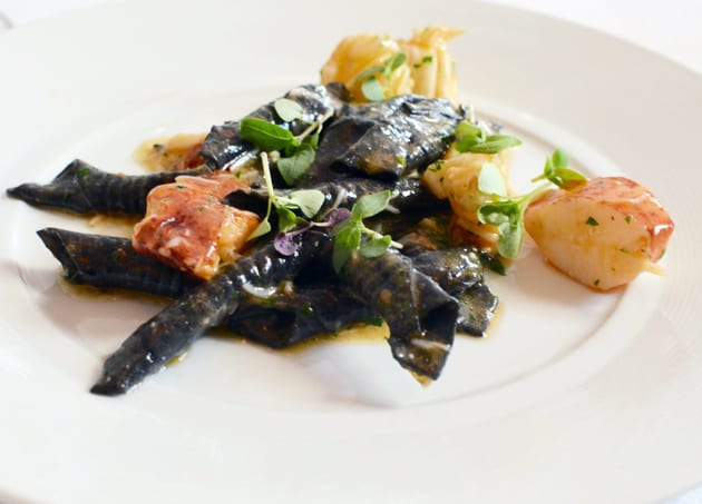 Spago Squid Ink Garganelli