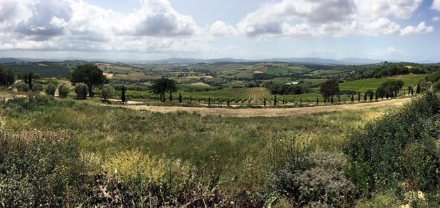 Maremma View - A Tuscan Landscape