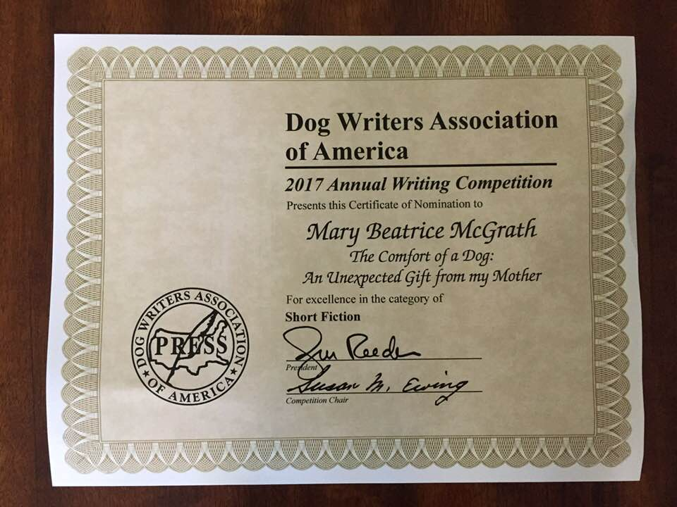 DWAA Finalist Nominee Written Palette Guest Writer, Mary McGrath