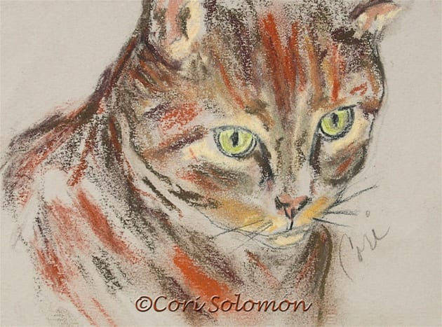 Mischief Maker Tabby Cat Art By Cori Solomon