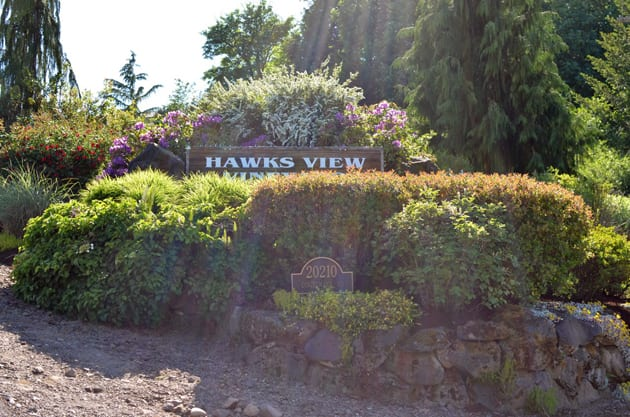 Dog-Friendly Places Hawks View Winery
