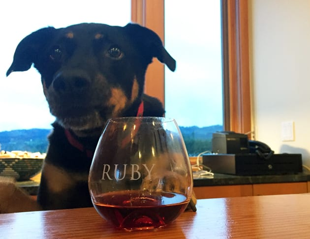 Ruby Vineyards Winery Dog Stanley