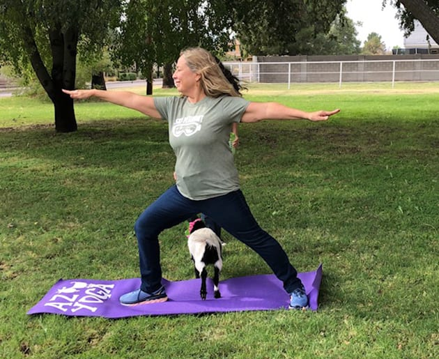 Warrior II - Arizona Goat Yoga