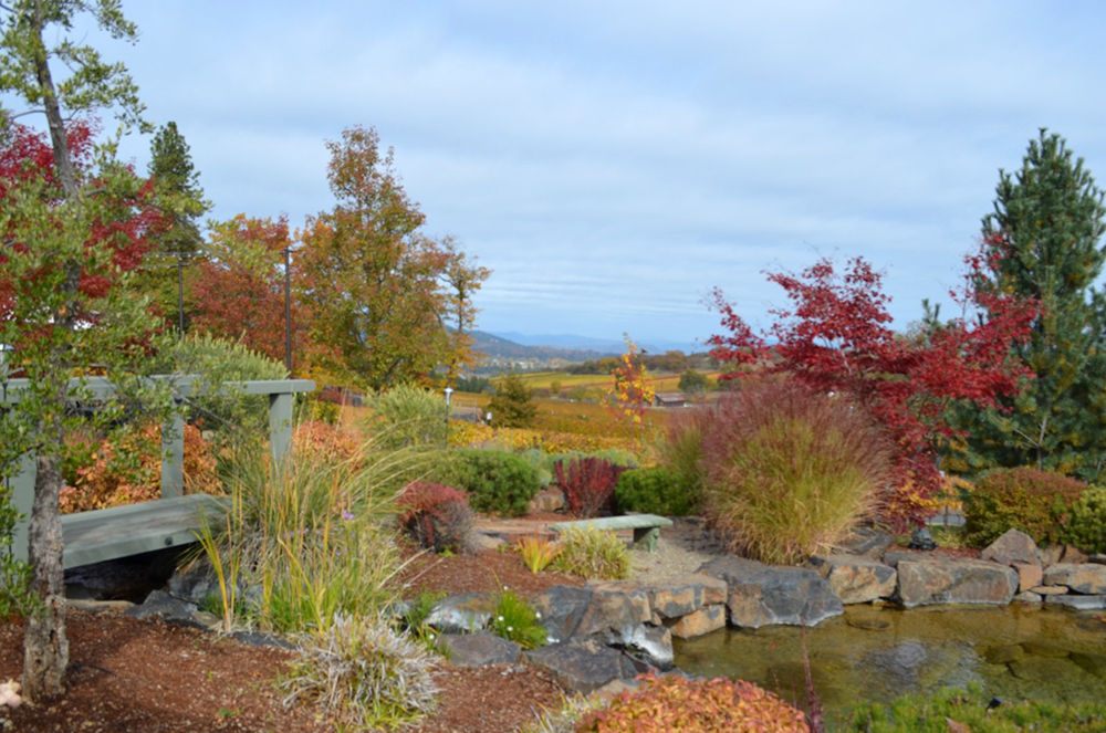 Fall Collors in Ashland Oregon and the Rogue Valley