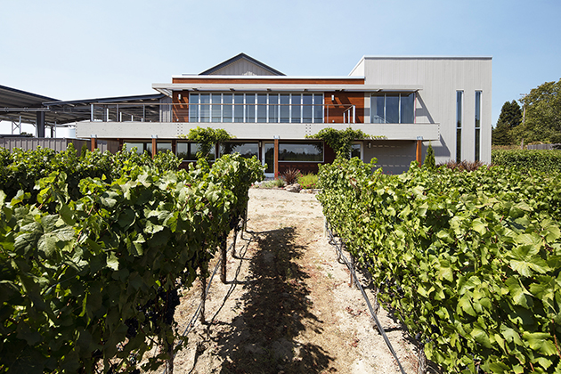 Feng Shui Designed Ron Rubin Winery © Ron Rubin Winery
