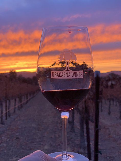 A Glass of Dracaena Cabernet Franc at Sunset
